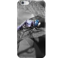 Blue Eyed Dragonfly iPhone Case/Skin