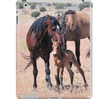 Newborn Foal Gets Groomed iPad Case/Skin