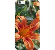 Double Daylilies iPhone Case/Skin