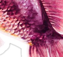 Pinky Fish Sticker