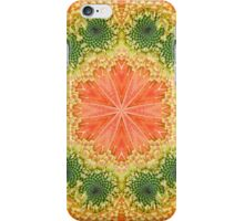 Daisy Kaleidoscope iPhone Case/Skin