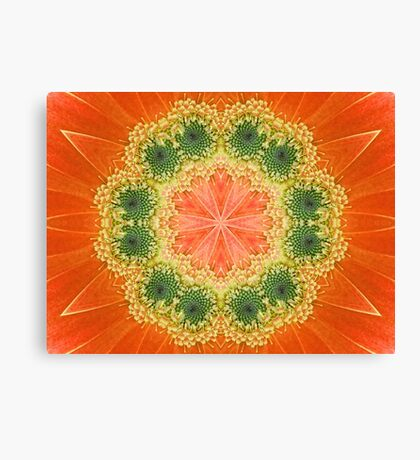Daisy Kaleidoscope Canvas Print