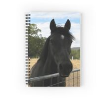 Abz anticipating dinner Spiral Notebook