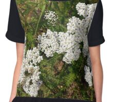 Small beautiful flowers in the grass. Chiffon Top