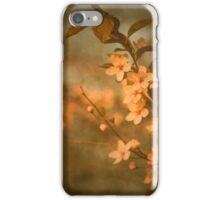 There is no Urgency iPhone Case/Skin