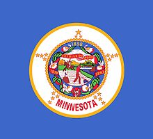Minnesota State Flag by Carolina Swagger