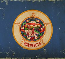 Minnesota State Flag VINTAGE by Carolina Swagger