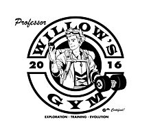 Willow's Gym Photographic Print