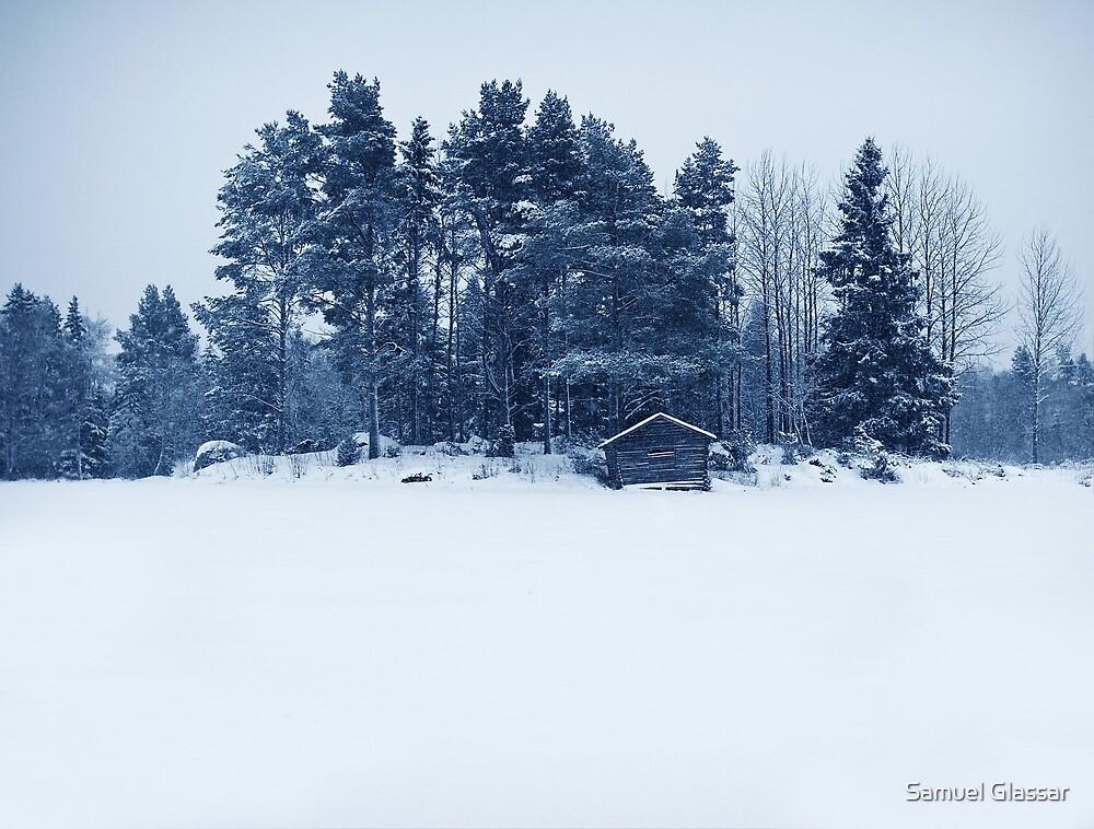 Whiteness by Samuel Glassar
