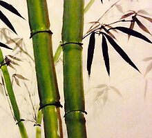 Hearty bamboo by Rosalind Clarke