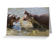 Male Hippos Fighting Greeting Card