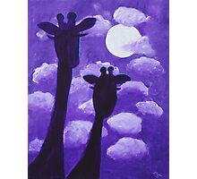 Giraffes at Nightfall Photographic Print