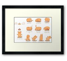 Red Yoga Cat set Framed Print