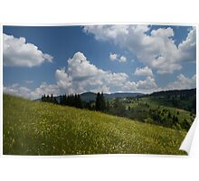 Wildflower Meadow in the Mountain Poster