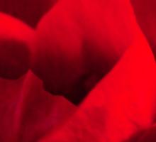 Satin-red rose petals Sticker