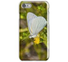 Banded Gold Tip Butterfly iPhone Case/Skin