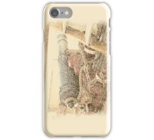 Pride of Baltimore II (Deck Cannon) iPhone Case/Skin