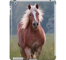 Backlit Beauty iPad Case/Skin
