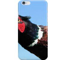 Pheasant iPhone Case/Skin