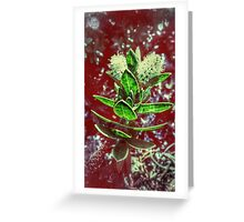 Floral Negatives Greeting Card