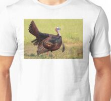 Sunset Regalia Unisex T-Shirt
