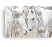 Smokey & Rachael Canvas Print