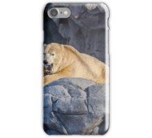 Sea World Polar Bear Hudson iPhone Case/Skin