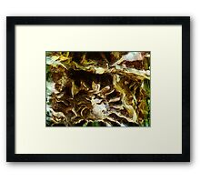 Yellow, brown and black abstraction Framed Print