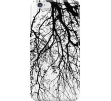 AUTUMN BRANCHES iPhone Case/Skin