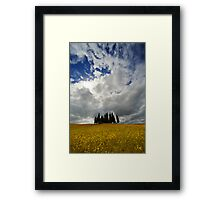 Cypresses of Toscany Framed Print
