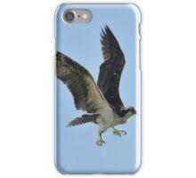 Striking osprey iPhone Case/Skin