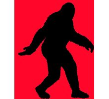 Sasquatch Photographic Print