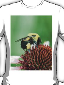 Pollen Collecting T-Shirt