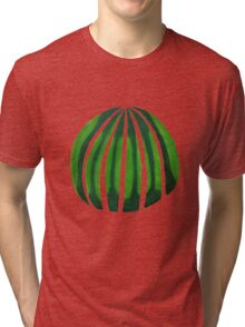 cactus?watermelon Tri-blend T-Shirt