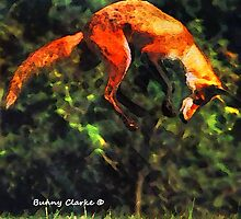 Fabulous Foxes: A Leap of Faith by Bunny Clarke
