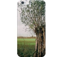 Pollard Willow In The Wind iPhone Case/Skin