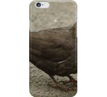 Blackbird With Severed Worm iPhone Case/Skin
