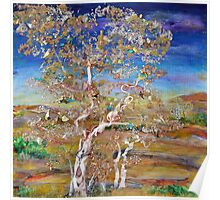 Solace - mixed media birches Poster