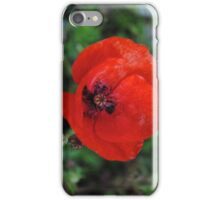 Is still A Poppy iPhone Case/Skin