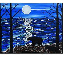 Shadow bears Photographic Print