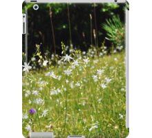 White Stars iPad Case/Skin