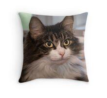 Tabby Cat Peanut Throw Pillow