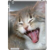 Funny Kitty iPad Case/Skin