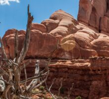 Dead Tree at Arches National Park-Utah Sticker