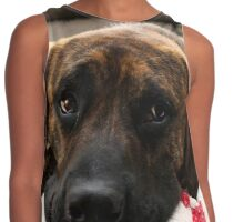 Brindle Mastiff Mix Dog Contrast Tank