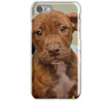 Pit Bull Mix Puppy  iPhone Case/Skin