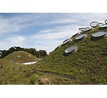 CA Academy of Sciences Roof Photographic Print