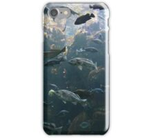 Life in Shallow Waters iPhone Case/Skin