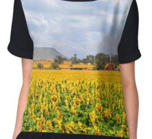 Sunflower Panorama - Free State, South Africa Chiffon Top