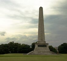 Wellington Monument by ValeriesGallery